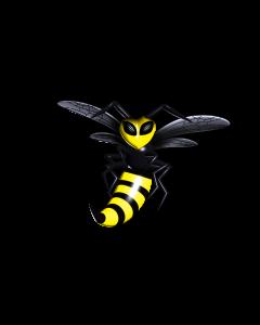 Bi- og hvepseplaster, 5 stk
